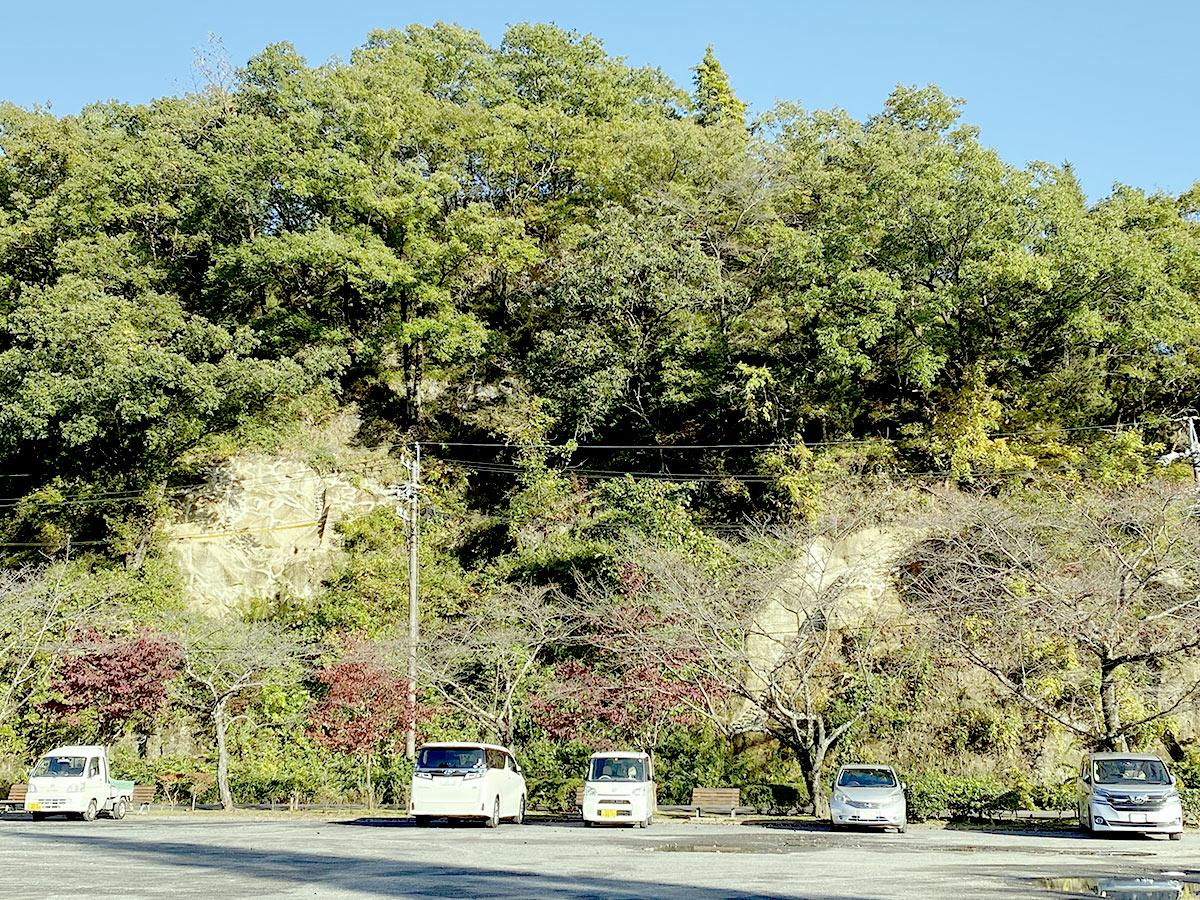 瑞浪市民公園落石防止工事着工後